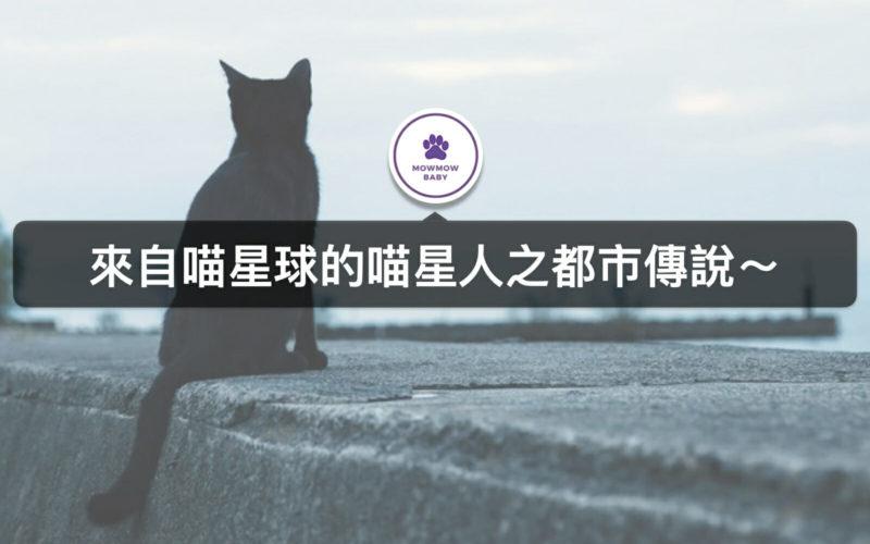 關於貓瞳孔可得知現在幾點,貓有九條命是真的嗎?關於喵星人傳說~