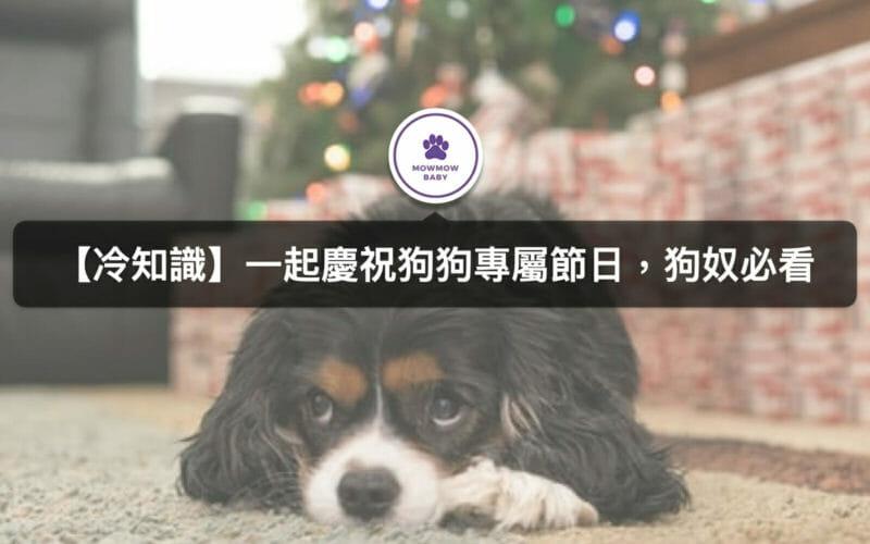 狗也有專屬寵物節日?台灣狗狗節你有聽過嗎?
