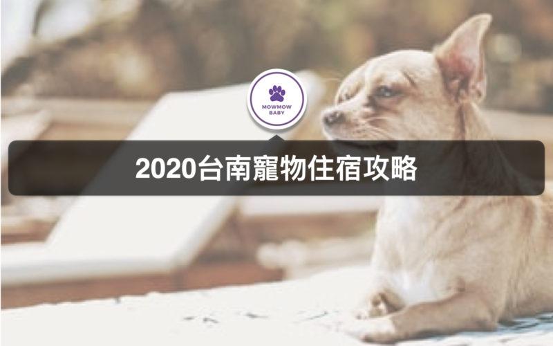 台南寵物友善住宿帶著寵物旅遊去