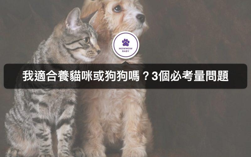 想養寵物需要注意什麼?三大貓狗飼養必懂須知
