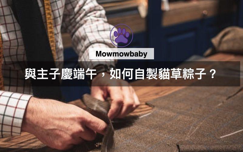 DIY小教室|教你如何自製貓草粽子?